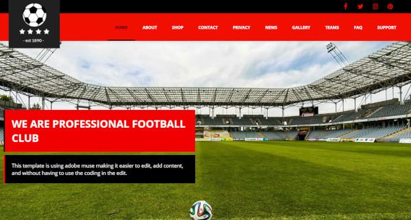 football-club-redux-framework-wordpress-theme