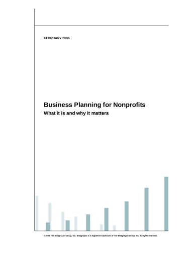 formal business plan for nonprofits