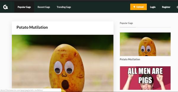 gags custom plugin wordpress theme