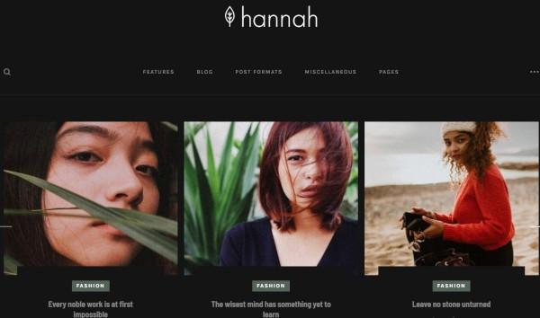hannah live customizer wordpress theme