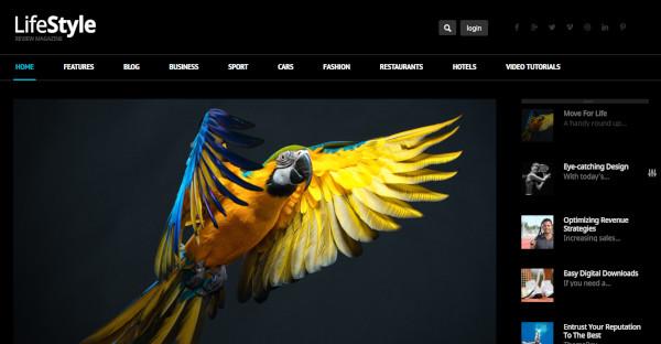 Lifestyle – Custom WordPress Theme