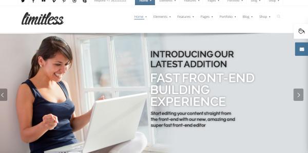 limitless – user friendly wordpress theme