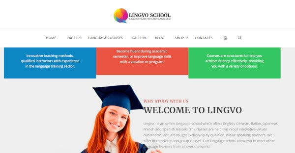 lingvo – responsive wordpress theme