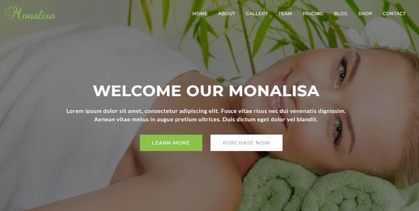 monalisa html5 css3 wordpress theme