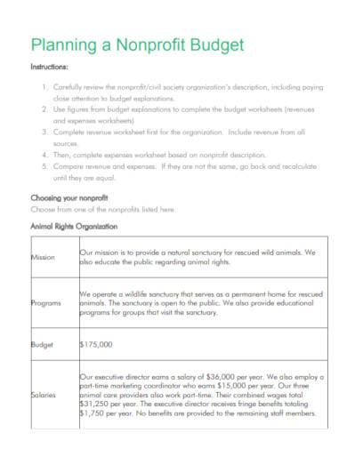 nonprofit budget plan sample