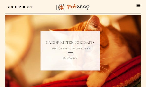petsnap – user friendly wordpress theme