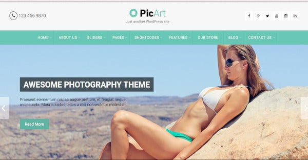 Picart - Fully Widgetized WordPress Theme