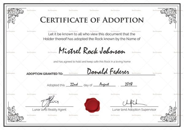 printable adoption certificate1 767x542