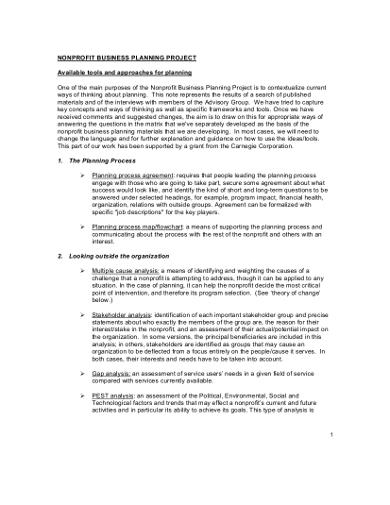 professional-nonprofit-business-plan