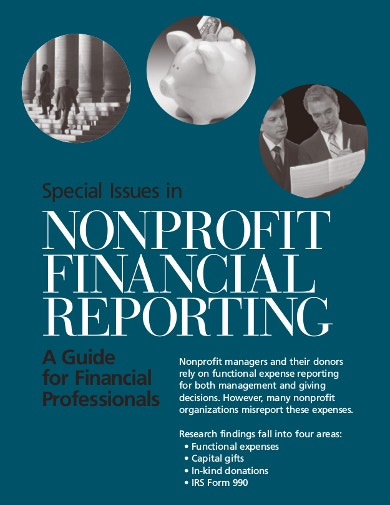 professional-nonprofit-financial-report