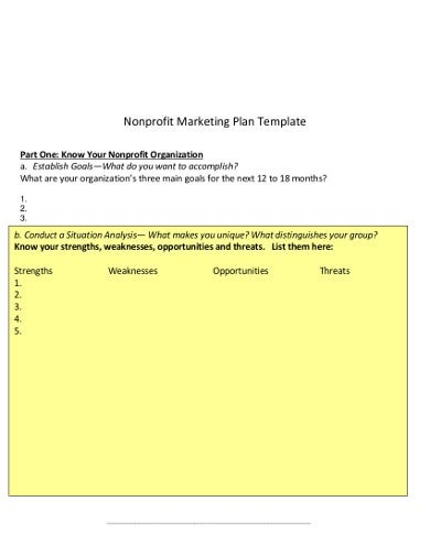 professional nonprofit marketing plan