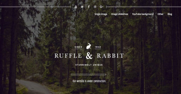 Rabbit - MailChimp Ready WordPress Theme