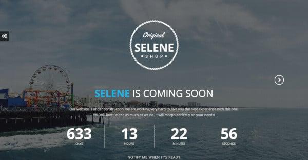 SELENE - AJAX PHP Subscription WordPress Theme