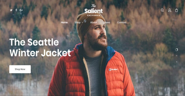 salient – multi purpose wordpress theme