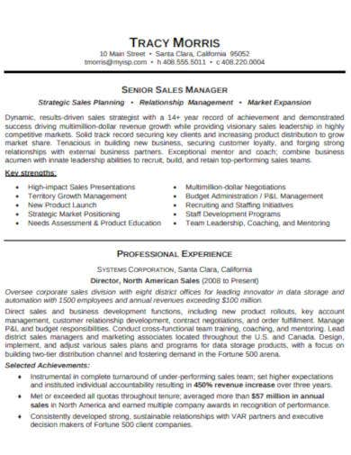 senior sales manager resume