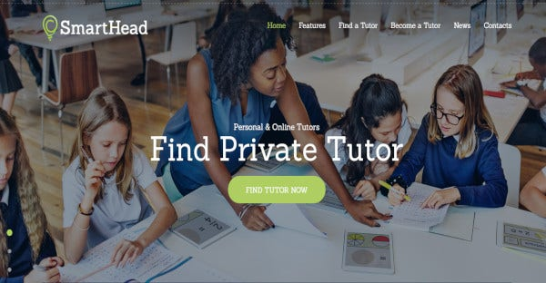 smart head – customizable wordpress theme