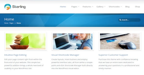 sterling – premium plugins wordpress theme