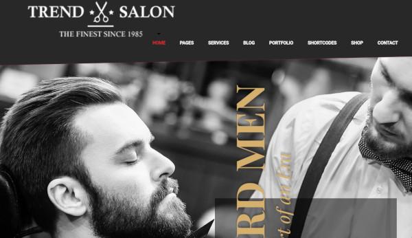 trend salon – customized wordpress theme