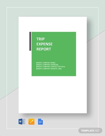 trip expense report