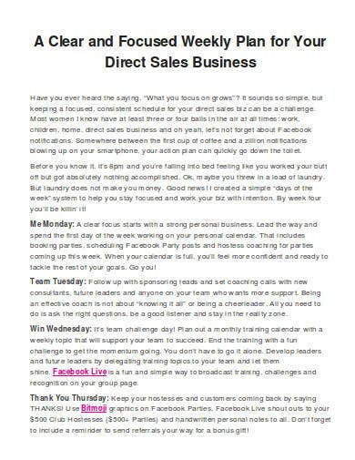 weekly plan for sales business