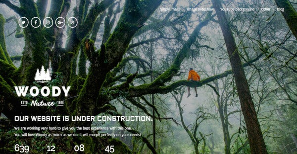 Woody - 10 Background Effects WordPress Theme