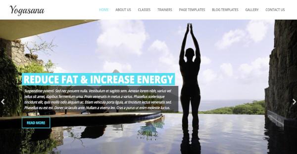 yogi wpml widgets wordpress theme