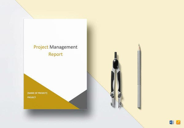 project management report mockup