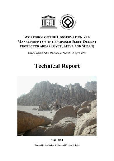 technical report sample 01