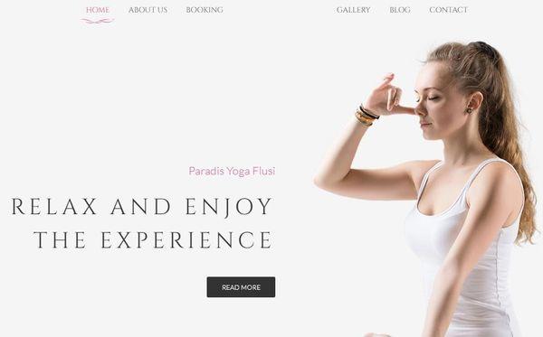 Flusi – Responsive WordPress Theme