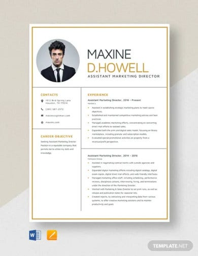 assistant marketing director resume template1