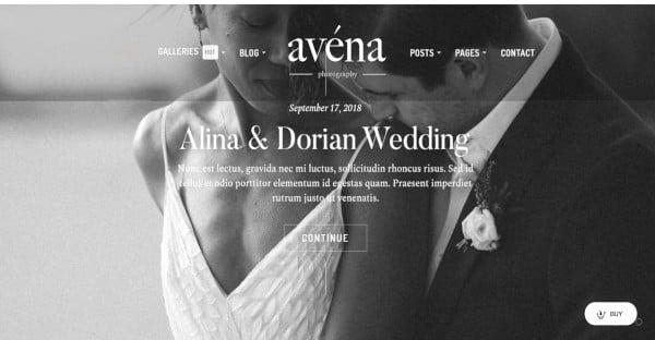 avena 7 gallery styles wordpress theme