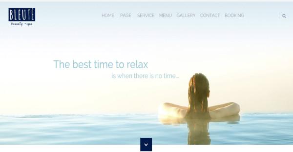 Bleute - Photo Gallery WordPress Theme
