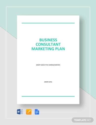 business consultant marketing plan1