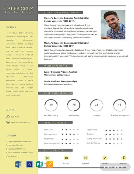 business process executive infographic resume