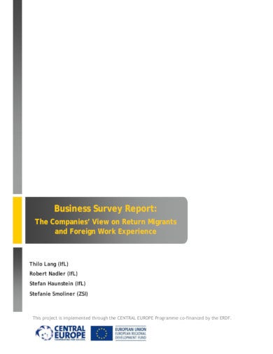 business survey report in pdf