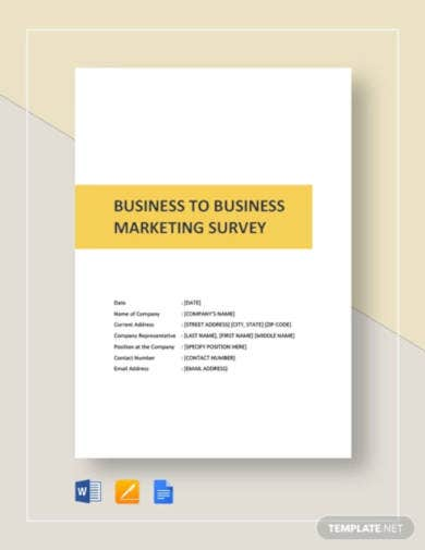 business to business market survey1