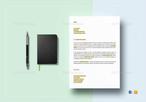 ceo offer letter of recommendation template