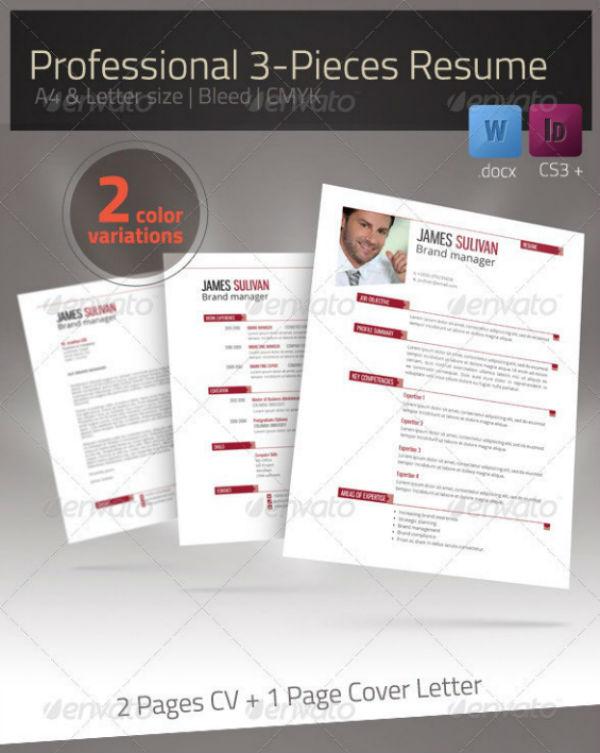 clean business marketer cv template