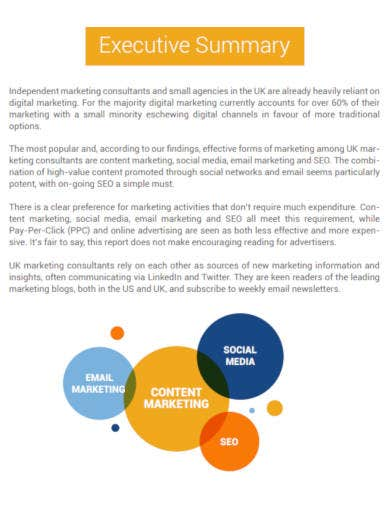 digital marketing survey in pdf
