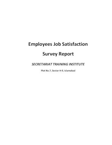 employee job satisfaction survey report