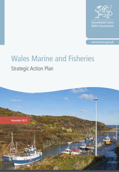 fisheries strategic action plan template
