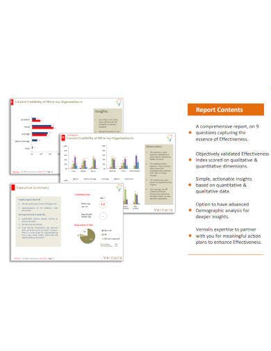 hr-survey-report-example