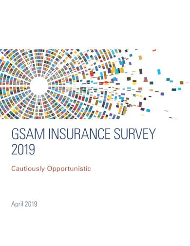 insurance-survey-example-in-pdf