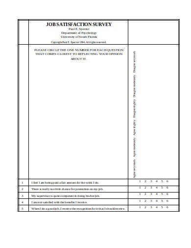 job satisfaction survey in pdf