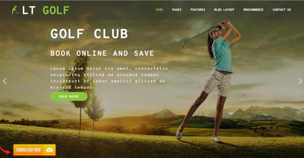 lt golf – custom wordpress theme
