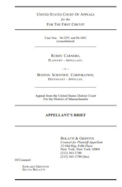 legal brief statement example