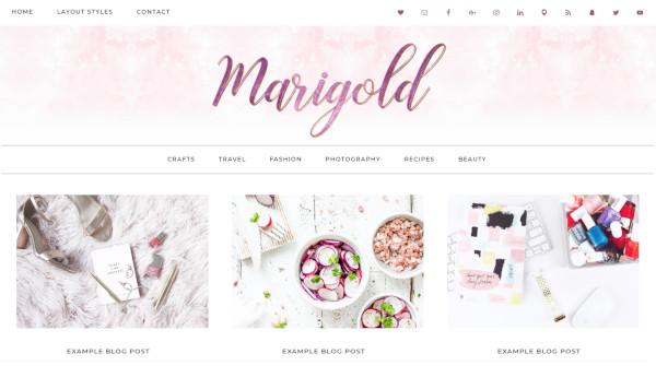 marigold 3 posts formats wordpress theme