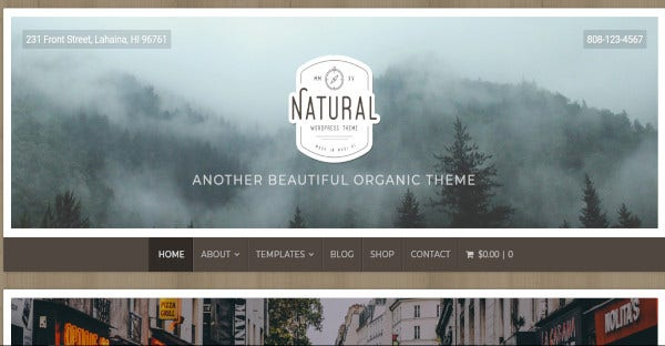 natural – gravity forms compatible wordpress theme