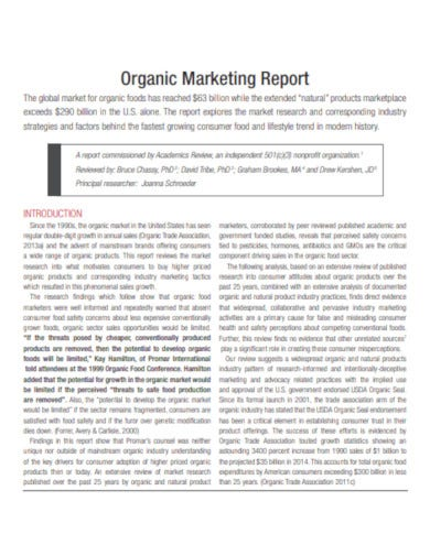 organic marketing report template