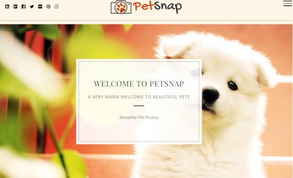petsnap html5 and css3 wordpress theme
